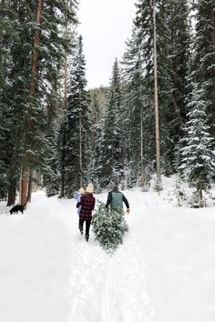 """""""Here, instead of strapping on their street shoes for Black Friday shopping, they would take their hiking boots to White River National… Holiday Traditions, Family Traditions, Winter Photography, Photography Tips, Artifact Uprising, Christmas Mood, Merry Christmas, Christmas Fairy, Winter Photos"""