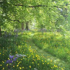 Garden at Milton Hall. Photo by Sarah Ann Johnson Garden at Milton Hall. Photo by Sarah Ann Johnson Beautiful World, Beautiful Gardens, Beautiful Places, Parks, Dream Garden, Pathways, Belle Photo, Beautiful Landscapes, Garden Inspiration