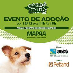 BONDE DA BARDOT:  SP: Grande evento de adoção do Instituto MAPAA no Boavista Shopping neste sábado (12/12)