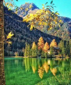 Champex Lac, Switzerland From Travel Pictures, Travel Photos, Canada, Travel Goals, Great View, Solo Travel, Landscape Photography, Places To Go, Beautiful Places