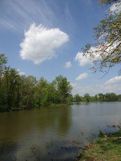 Christopher Lake - Southern Illinois