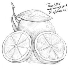 Как нарисовать лимон карандашом поэтапно 4