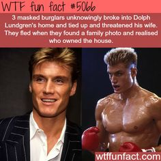 """Burglars broke into Dolph Lundgren's house, then """"fled"""" when they realized who OWNED the Home... - WTF fun facts"""