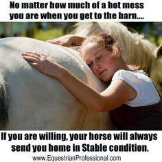 #horse quote