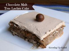Chocolate Malt Tres Leches Cake: Growing Up Gabel