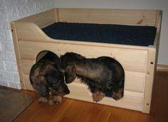 Nästa måste-ha-pryl för hundarna! En Busterbua.