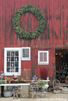 Gorgeous red barn sets the background for Northwind Perennial Farm in WI