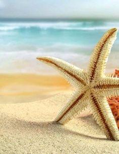 Лето❤️, солнце, море, пляж— я люблютакой…