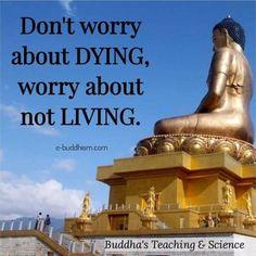 Buddha Quotes Inspirational, Zen Quotes, Meditation Quotes, Wisdom Quotes, Words Quotes, Life Quotes, Motivational Quotes, Sayings, Morning Meditation
