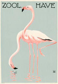 Zoo plakat Palle Wennerwald #plakat #zooplakat #poster #plakatgalleri #plakatgalleridk #PalleWennerwald  #Wennerwald