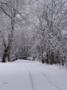 Snow-covered Schuylkill River Trail. Photo by Aaron Gould.