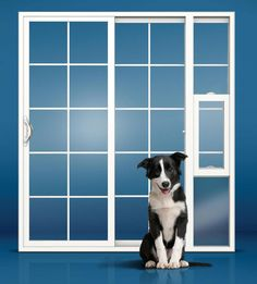 Screen Doors With Dog Door | The Screen Guys | Mobile Screening For Window  And Door Screens ... | Ideas For The House | Pinterest | Screen Doors, Dogs  And ...