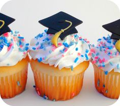 Graduation Party Favor Cupcake Toppers (12)