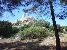 Region de Calvi - Notre-Dame de la Serra est une chapelle située à la sortie de Calvi, sur la route de Porto, elle domine Calvi et offre un superbe panorama sur tout le golfe. La Vierge (sainte patronne de la ville) qui y est dressée sur un rocher voisin protège la baie. Une célébration y est consacrée chaque année.