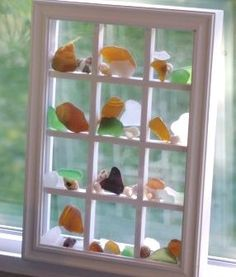 Seaglass and seashells in window frame
