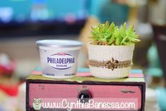 s the 15 most brilliant uses people came up with for plastic containers, container gardening, repurposing upcycling, storage ideas, Nest succulents in a cleaned cream cheese tub Nest succulents
