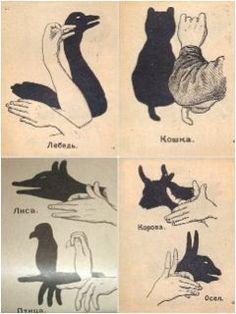 Картинки по запросу theatre of hand shadows