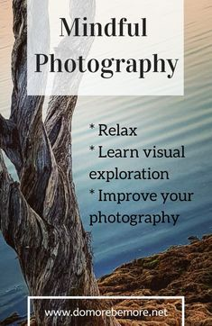 Mindful photography is a way to relax, meditate, learn to explore your surroundings and improve your photography skills. Find a couple of free hours and try this out! Phone Photography, Photography Tips, Travel Photography, Creative Photography, Sense Of Sight, Find Instagram, Learning To Relax, Ways To Relax, Natural Energy