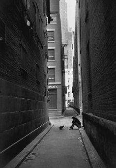 1947 alleyway