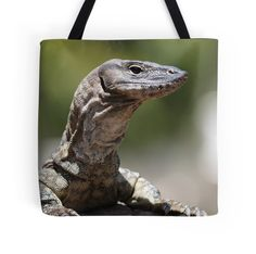 'heathie the friendly heath monitor' Tote Bag by shotbysas . Iphone Wallet, Iphone Cases, New Bag, Laptop Skin, Bag Sale, Monitor, Canvas Prints, Tote Bag, Bags