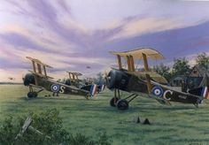 100 years of aviation history. Ww1 Art, Pilot, Aircraft Painting, Airplane Art, World War One, Fighter Aircraft, Aviation Art, Military Art, Military Aircraft
