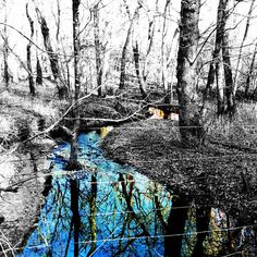Creek color splashed