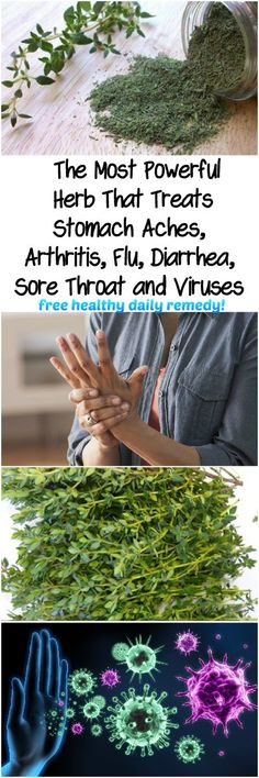 The Most Powerful Herb That Treats Stomach Aches, Arthritis, Flu, Diarrhea, Sore Throat & Viruses…! - Tips Life Mega Sore Throat, Health Tips For Women, Health And Beauty, Beauty Skin, Stomach Ache And Diarrhea, Health Benefits Of Thyme, Thyme Essential Oil, Chemical Structure, Health