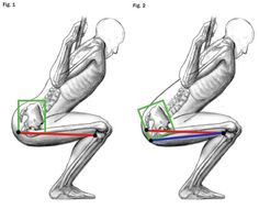 The Bottom Position of Your Squat: A Defining Characteristic of Your Human Existence - Juggernaut Training Systems - Juggernaut Training Sys...