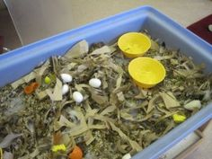 Add birds nest materials to the sensory bin. Can gather materials from outside (twigs). Bonus: use the materials to create real birds nests. Talk about how birds do weaving with no hands! :)