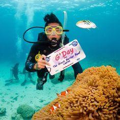 Certified to find Nemo || #Australia #Cairns #GreatBarrierReef #NormanReef #TeechWasHere #WanderlustTrip by itsteech http://ift.tt/1UokkV2