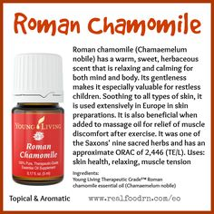 Roman Chamomile Essential Oil. Promote skin health, relaxation and relieve muscle tension. #romanchamomile #essentialoils