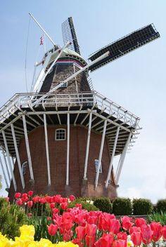 De Zwaan windmill - Holland Michigan, USA.