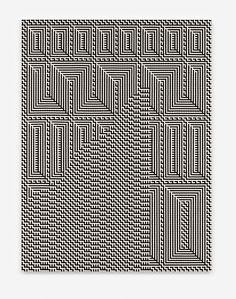 Tauba Auerbach - Shadow Weave - Fret Wave Tauba Auerbach, It Works, Weaving, Waves, Loom Weaving, Ocean Waves, Crocheting, Knitting, Hand Spinning