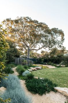 Tips, tricks, furthermore resource with regards to getting the greatest result and also making the optimum use of Easy Front Yard Landscaping Ideas Australian Garden Design, Australian Native Garden, Australian Farm, Vegetable Garden Design, Garden Landscape Design, Back Gardens, Outdoor Gardens, Coastal Gardens, Garden Cottage