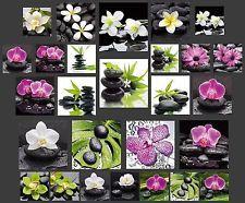 bambus und steine im wasser farbe 1 leinwanddruck zen deco feng shui pinterest toile. Black Bedroom Furniture Sets. Home Design Ideas