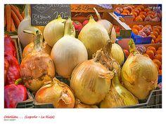 Cebollas de Navarra | por josé gracia gonzález