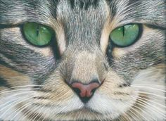 Emerald Eyes in Scratch Art Colored Pencil Project Kit - Instant Digital Download