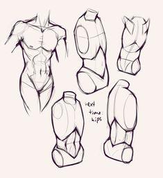 Torsos - anatomy studies - drawing drill challenge by smirking raven. Human Figure Drawing, Figure Drawing Reference, Art Reference Poses, Anatomy Reference, Life Drawing, Anatomy Drawing Practice, Hand Reference, Anatomy Poses, Anatomy Art
