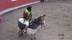 01  GRAN ANIVERSARIO DE LA REINA Y PATRONA DEL TORIL - CLAVELINA DE VILC... Goats, Horses, Animals, Music Production, Musicals, Strength, Animales, Animaux, Animal