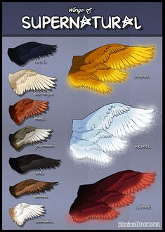 Angels wings- Supernatural. Pinning this for drawing reference! More