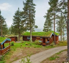 Norway, grass roofed cabin buildings - does this look like MY dream house, or what?