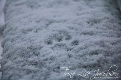 Den første snøen - Fru Jacobsen - Kone og firebarnsmor. Ikke perfekt men alltid ekte!