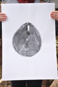 Items similar to Handmade Acorn relief woodprint, Tree ring print, Hand pulled, Tree stump on Etsy Tree Rings, Tree Stump, Start Writing, Acorn, Wood Print, Handmade Items, Prints, Printmaking, Etsy Shop
