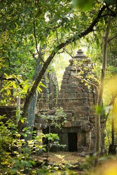 "hinducosmos: "" A centuries-old Gond temple is slowly being reclaimed by the forest in a corner of Satpura National Park in Madhya Pradesh, central India. Wild India: step into the real-life Jungle Book (via Lonely Planet) "" Temple Ruins, Hindu Temple, Khajuraho Temple, Jungle Temple, Places To Travel, Places To Visit, Tsubaki Chou Lonely Planet, Amazing India, Amazing Nature"