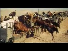 Lawrence of Arabia (1962) Original Theatrical Trailer