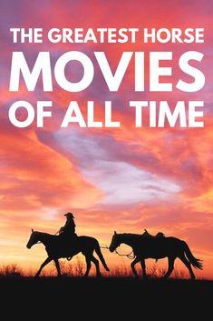 Feel like binge watching some great horse movies? We compiled all of the best on… - Entertainment Woman Riding Horse, Horse Riding Tips, My Horse, Crazy Horse, Horse Movies, Horse Books, All The Pretty Horses, Beautiful Horses, Horseback Riding Tips