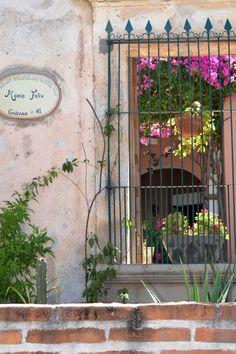 Old window, Alamos Sonora Mexico.
