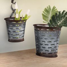 Our metal olive bucket hanging baskets are olive bucket inspired planters that are the perfect organizational tool and great for plants! Add these to your rustic decor for an instant showstopper! Visit, www.decorsteals.com OR www.facebook.com/decorsteals