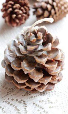 Need a fire starter pinecone - it could make a cute craft! Glamping Ideas for the Ultimate Camping Trip for the Girls! Glamping: where stunning nature meets modern luxury. #FrugalCouponLiving #glamping #glampingideas #camping #glampingparty #glampingtent #campinghacks #campingfood #glampingfood