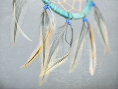 dream catcher, hailey is using mine, so this summer i will be in search of a new one for myself